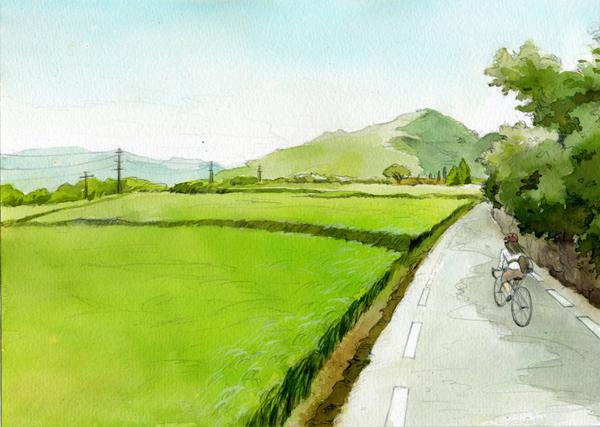 biketrip_field_72_.jpg