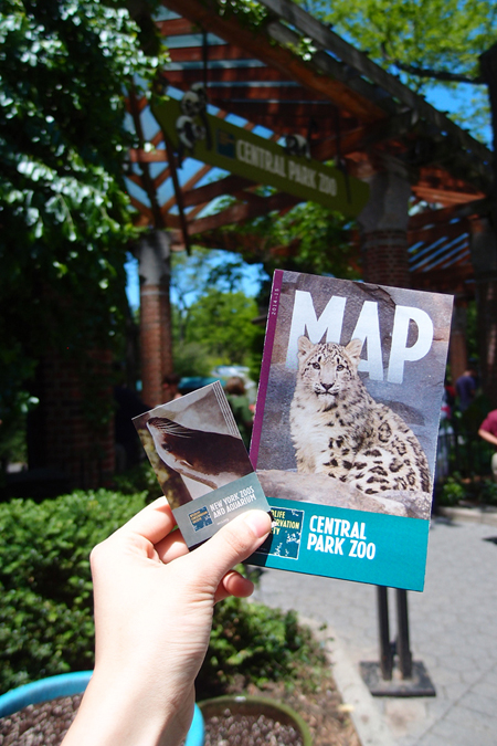 紐約 中央公園動物園