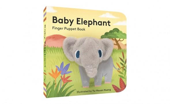 baby-elephant-4