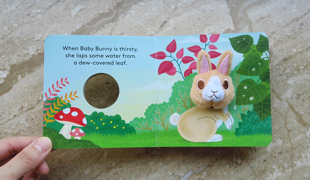 bunny-sp2
